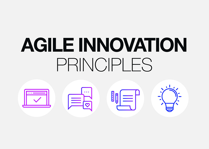 Principles of Agile Innovation Logo