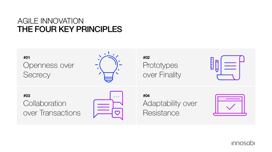Agile Innovation Principles